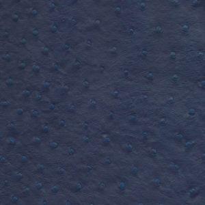 Sydney Blue