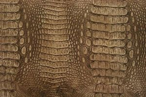 Croc Bronze